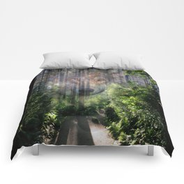 The Spirit of the Wild Comforters