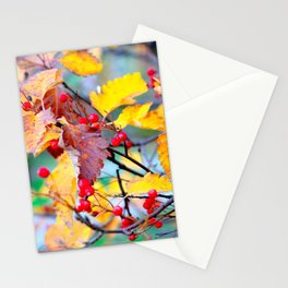 Classy Hawthorn Berries In Autumn Stationery Cards