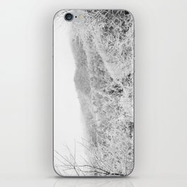 Carolina Winter iPhone Skin