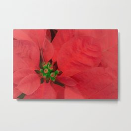 A Flower That Blooms In Red Metal Print