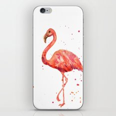 Flamingo, Pink Flamingo, Tropical, bird art, Florida iPhone & iPod Skin
