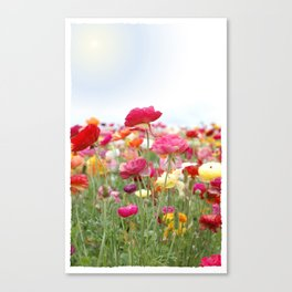 Bloom Where You're Planted! Canvas Print