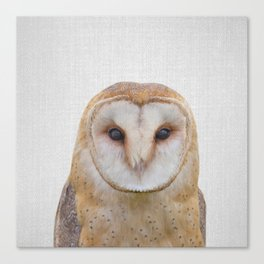 Owl - Colorful Canvas Print