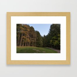 Image of forest in the autumn period, a side road plunges into the forest Framed Art Print