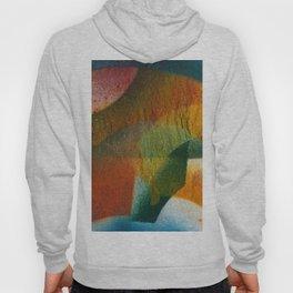 Abstract No. 535 Hoody