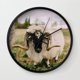 The Curious Sheep Wall Clock