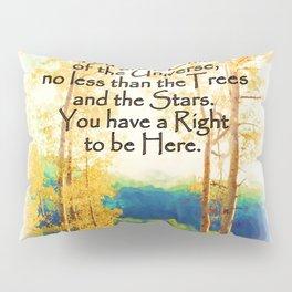 Faded Aspens DESIDERATA Pillow Sham