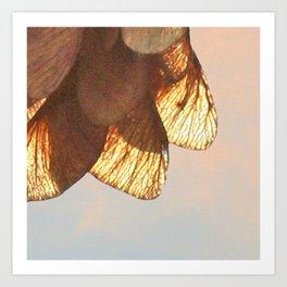 Cluster of lightened leaves Art Print