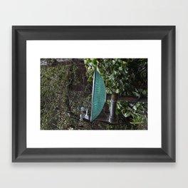 Glass Bowl Water Fountain Framed Art Print