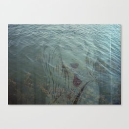 Lake Lady // Double Exposed Canvas Print