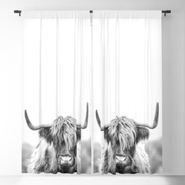Highland Cow Longhorn in a Field Black and White Blackout Curtain