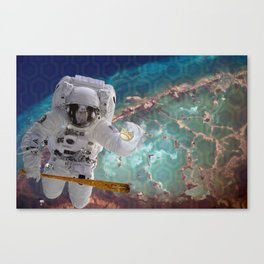 The Homerun That Never Landed Canvas Print