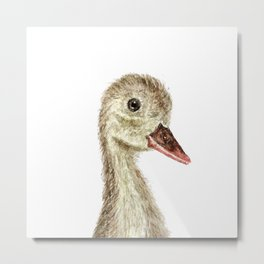 smiling little duck Metal Print