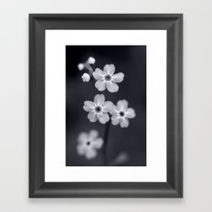 Forget me not BW Framed Art Print