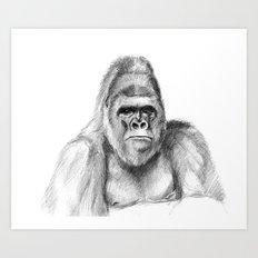 Gorilla male sketch SK020 Art Print