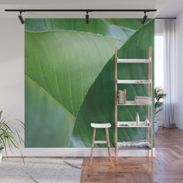 Big Banana Leaves green Wall Mural
