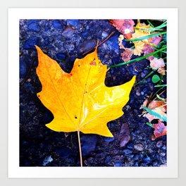 fallen yellow Art Print