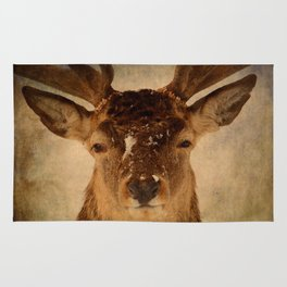 Deer In Headlights Rug