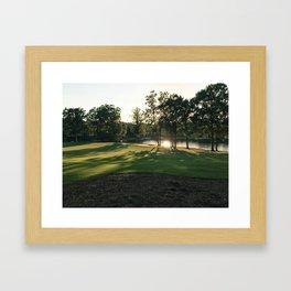 Shining Through the Trees Framed Art Print