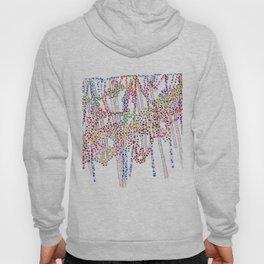 Prismatic Rain Hoody