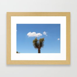 Lonely Joshua Tree Framed Art Print