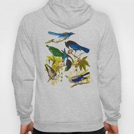 Yellow-billed Magpie Bird Hoody
