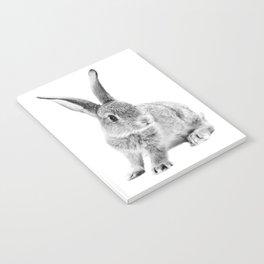 Rabbit 25 Notebook