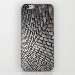 Leaves on cobblestones iPhone Skin