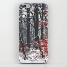 Winter Day iPhone & iPod Skin
