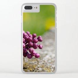 Syringa vulgaris lilac Clear iPhone Case