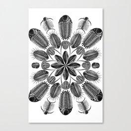 Trilobite and Fossil Mandala, Collage using Ernst Haeckel illustrations Canvas Print