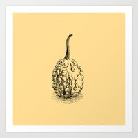 pumpkin Art Prints featuring Pumpkin by Antonina Sotnikova
