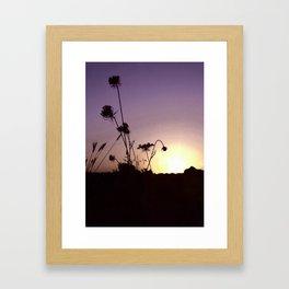 Wildflowers Sunset Framed Art Print