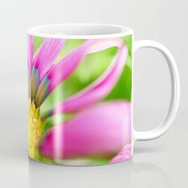 Bright Multi-color African Daisy Coffee Mug