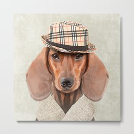 The stylish Mr Dachshund Metal Print