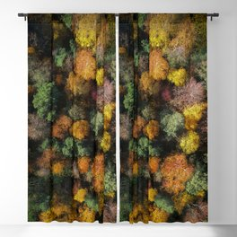 Autumn Forest - Aerial Photography Blackout Curtain