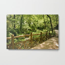 A Walk into the Forest (aka NYC Central Park) Metal Print
