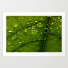 Green Bubbles 2 Art Print