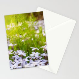 Sun-kissed Meadows with White Star Flowers Stationery Cards
