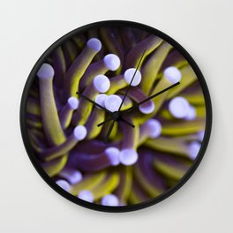 Coral Euphylia Golden Torch Wall Clock