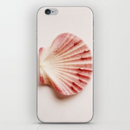 shells with leaves  iPhone Skin