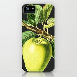 Green Apple (Malus Domestica) - Vintage Scientific Illustration iPhone Case