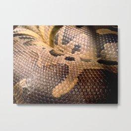 Anaconda Metal Print