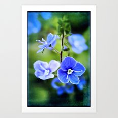 it is spring Art Print