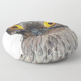 Potoo Face Bird Probably After Drug Doesn't Understand Floor Pillow