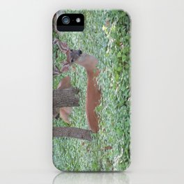 Here's Looking at You! iPhone Case