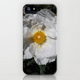 Spanish Jara (Cistus) iPhone Case