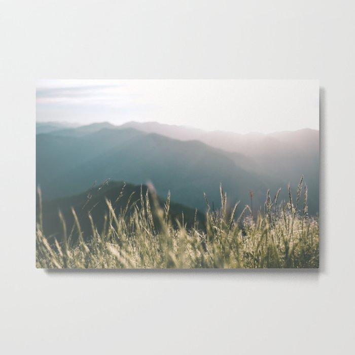 Oregon Coast Range Metal Print