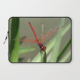 Beautiful Red Skimmer or Firecracker Dragonfly Laptop Sleeve