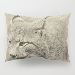 beautiful lynx Pillow Sham